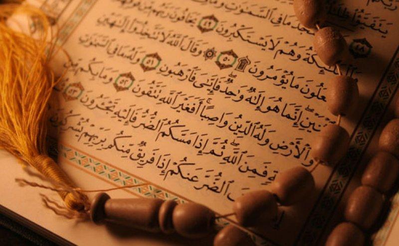 Surah Al Anaam