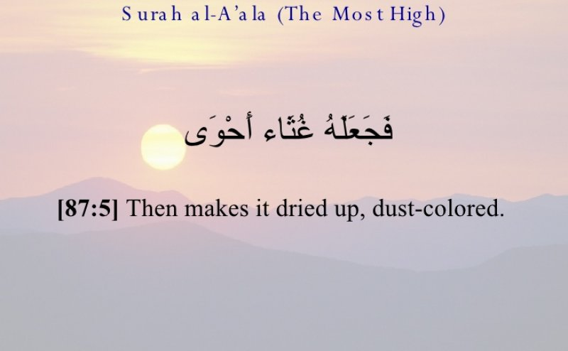 Surah Al-Alaa with Urdu Translation MP3 Download