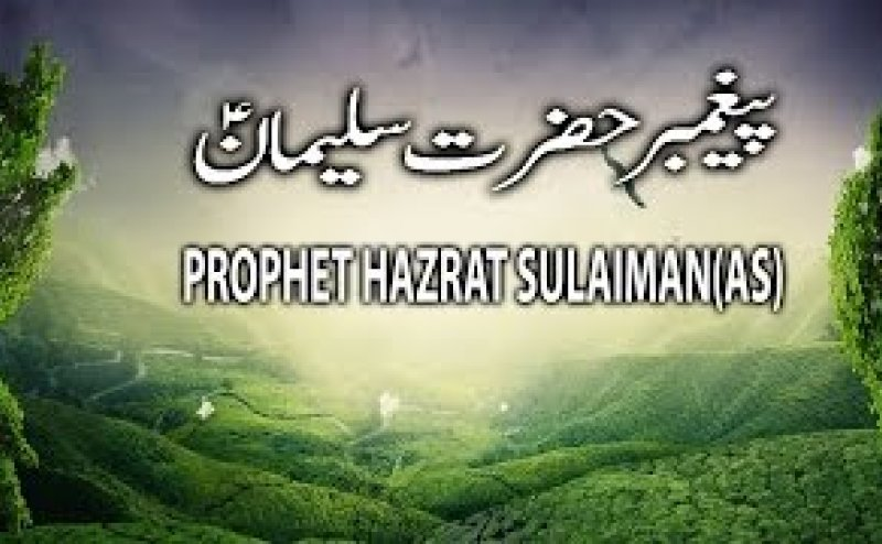 Image result for Hazrat Sulaiman