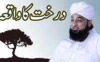 Darakht Ka Waqia Saqib Raza Mustafai