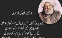 parh parh alam fazal hoya lyrics in urdu, punjabi kalam, download mp3 punjabi naat, bulleh shah parh parh alam, bulleh shah parh parh ilm translation, bulleh shah,  Sallallahu Alayhi Wasallam, صلى الله عليه و سلم, naat khawan, naat khawan names, naat khawan profiles, famous naat artists of the world, naat artists