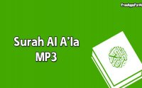 surah al ala, surah al ala mp3, surah al ala download, surah al ala az zahrani, surah al ala online, surah al ala audio, surah al ala mp3 online, Sallallahu Alayhi Wasallam, صلى الله عليه و سلم, naat khawan, naat khawan names, naat khawan profiles, famous naat artists of the world, naat artists, hamd audio, quran audio, arifan kalam, sufi kalam, lecture, bayan, muslim scholars, famous muslim scholars, islmaic lectures mp3, quran mp3, famous qari of the world, urdu bayans