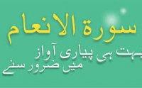 Surah Anam Qari Basit