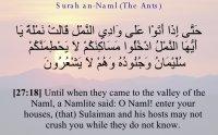 surah an naml mp3, surah an naml, Sallallahu Alayhi Wasallam, صلى الله عليه و سلم, naat khawan, النمل, surah naml sudais, surat naml, listen surah an naml, al quran,  naat khawan names, naat khawan profiles, famous naat artists of the world, naat artists, hamd audio, quran audio, arifan kalam, sufi kalam, lecture, bayan, muslim scholars, famous muslim scholars, islmaic lectures mp3, quran mp3, famous qari of the world, urdu bayans