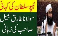 The Life Story of Tipu Sultan