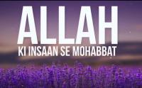 hazrat ibrahim ka waqia in urdu, allah ka insan se pyar, mehman ki izzat bayan