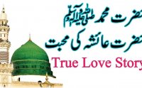 true story of hazrat ayesha, true story of hazrat ayesha mp3 bayan, true story of hazrat ayesha download, true story of hazrat ayesha bayan, tariq jameel bayan